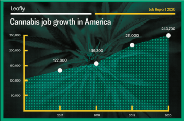 Legal Cannabis Posts 15% Annual Job Growth in 2019