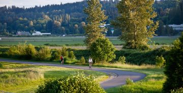 Woodinville Wine Country Hollywood