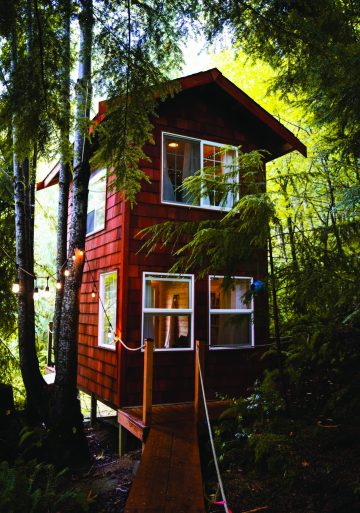Treehouse Place