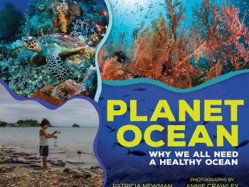 Seattle Underwater Photographer and Filmmaker Launches PLANET OCEAN
